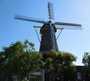 holland-main
