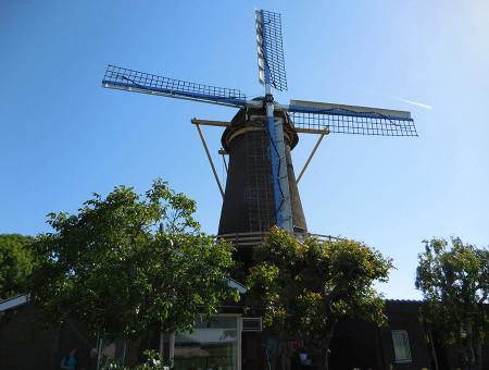 Kinderdijk and Amsterdam